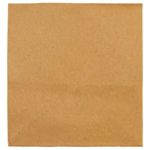 Filtri di ricambio in carta da 10 pezzi Einhell 2351100